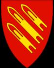 Logo gamvik 21