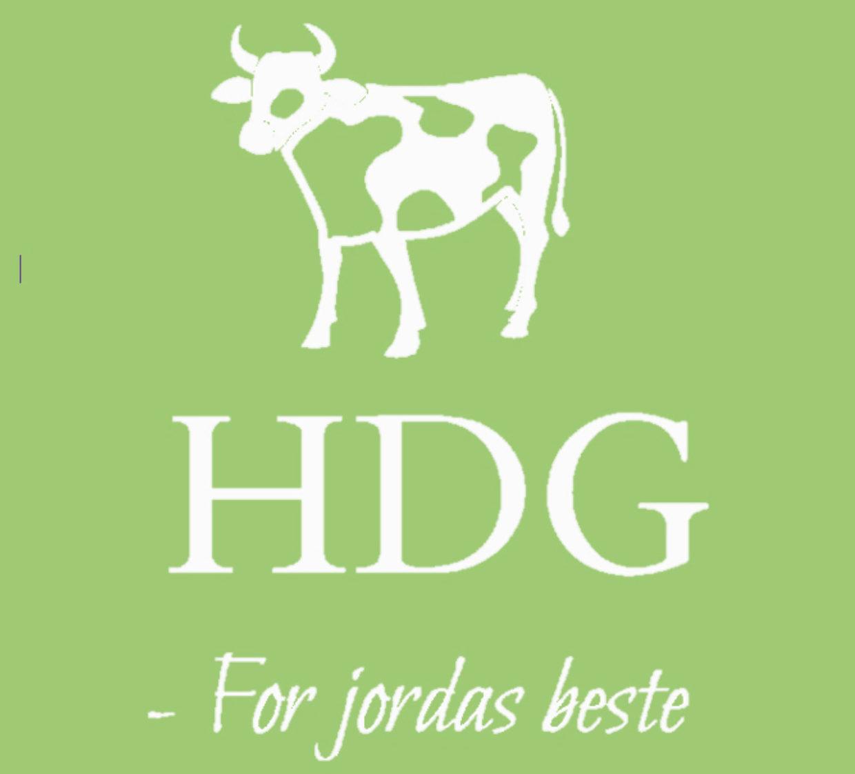 HDG UB Logo