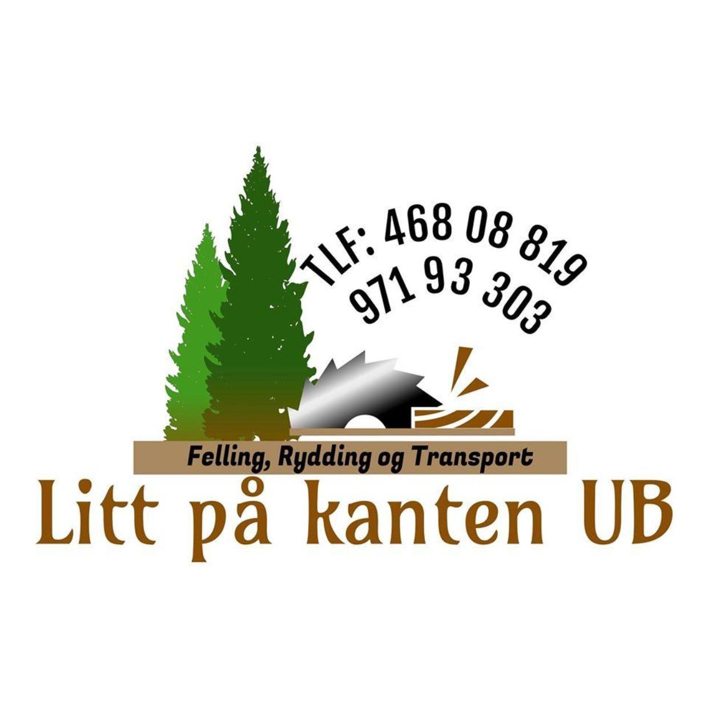 Litt pa kanten UB logo