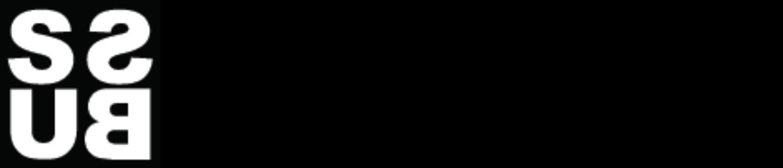 Stick Solution Logo