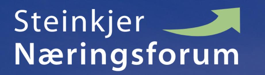 Steinkjer naeringsforum logo
